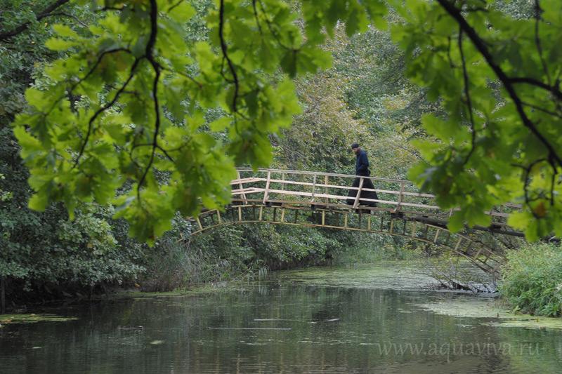 На остров воскресной школы можно попасть по этому мостику или на пароме