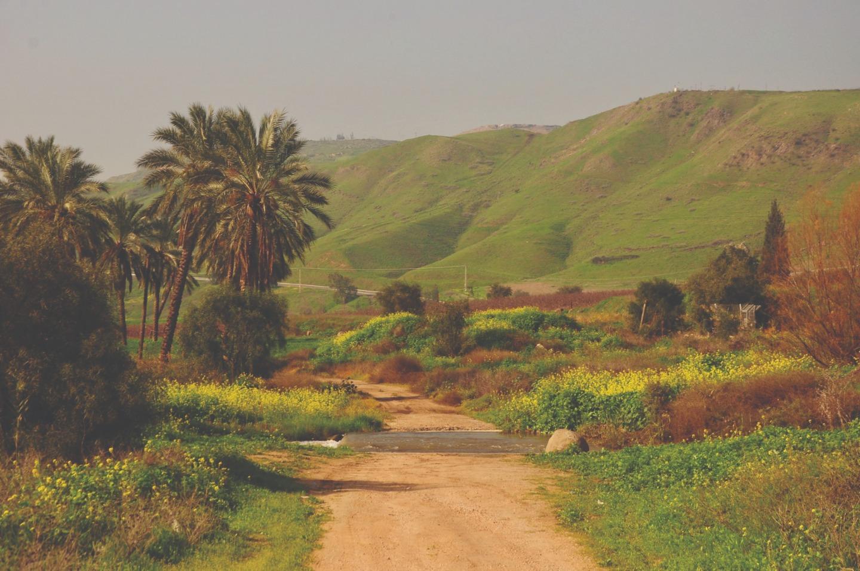 Природа на севере Израиля