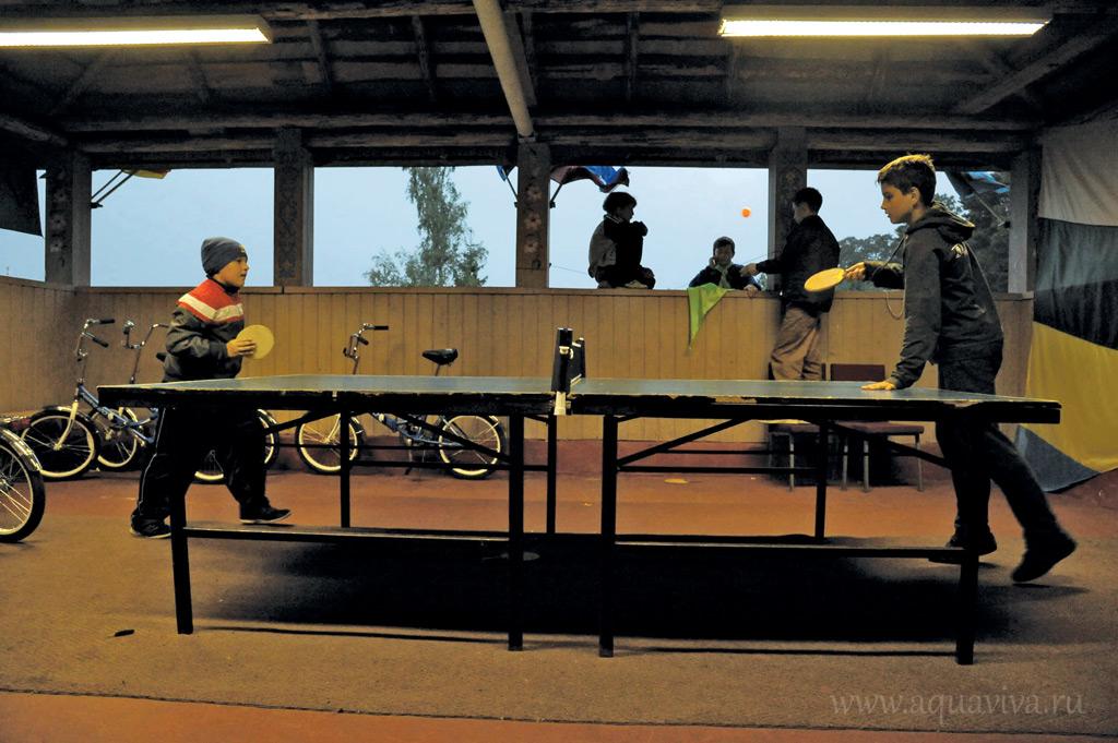 Благодаря помощи депутатов в лагере есть столы для пинг-понга