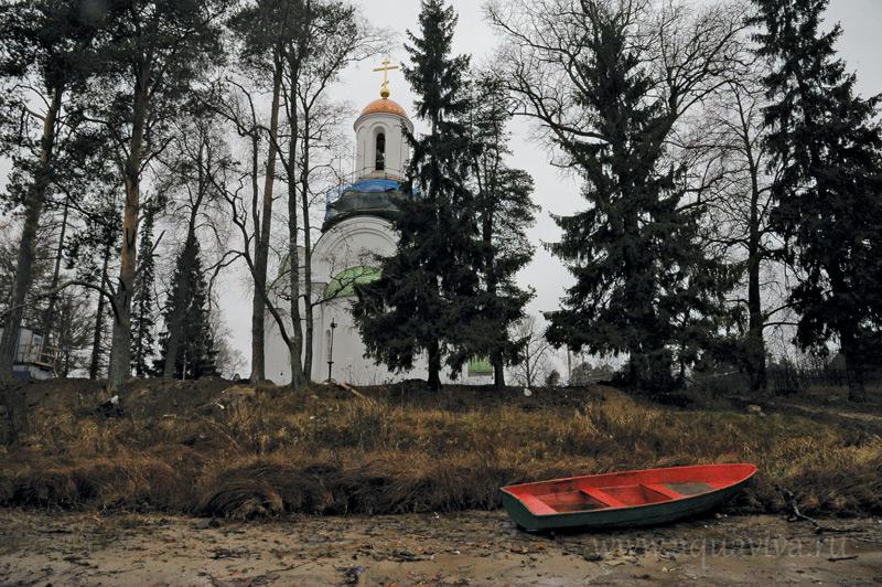 Храм преподобного Александра Свирского в селе Паша