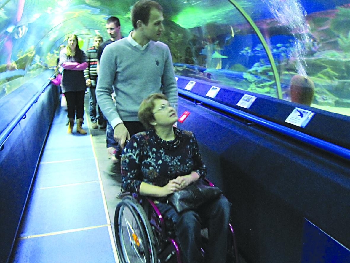 С обществом инвалидов в океанариуме