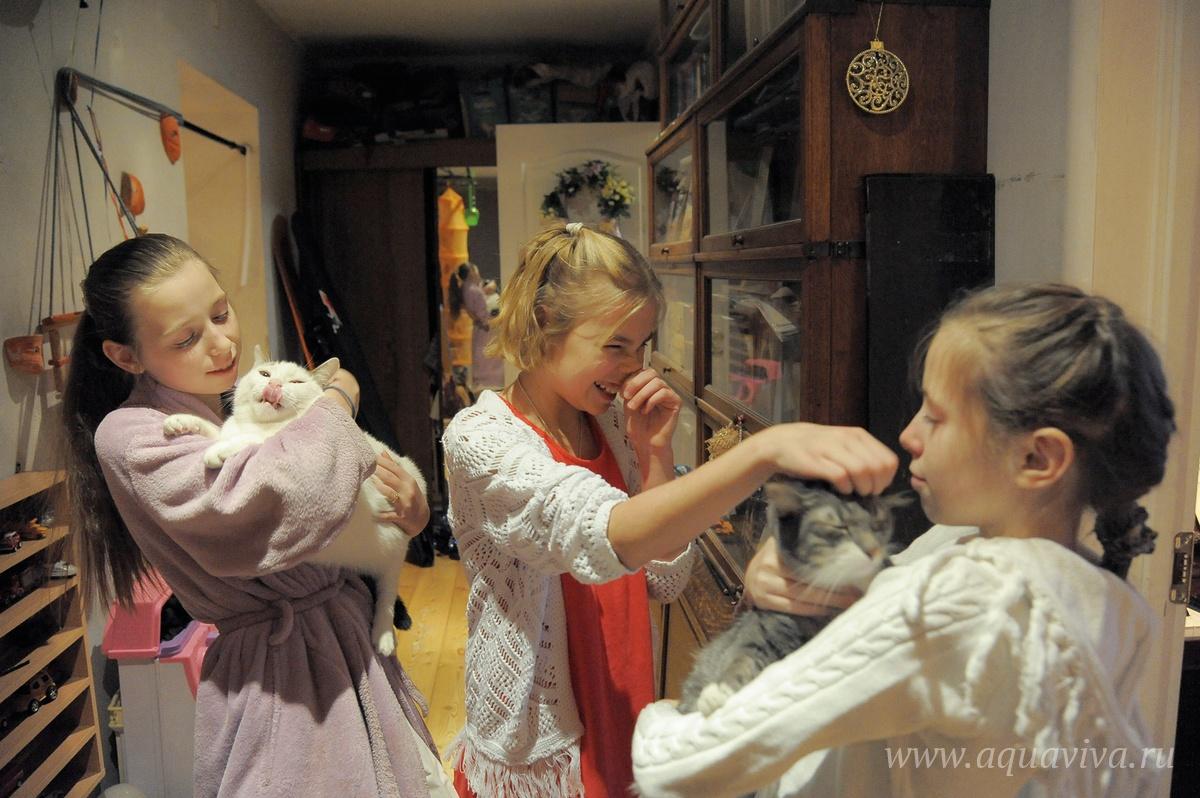 Восемь детей и три кота. Теперь Наталья подумывает, не завести ли собаку