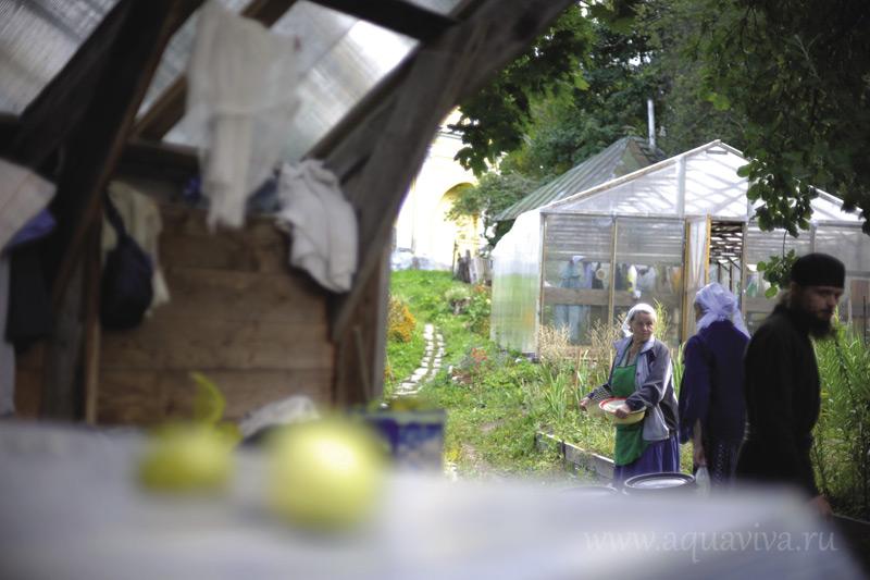 Самое примечательное в монастырском хозяйстве — айва и бабушки