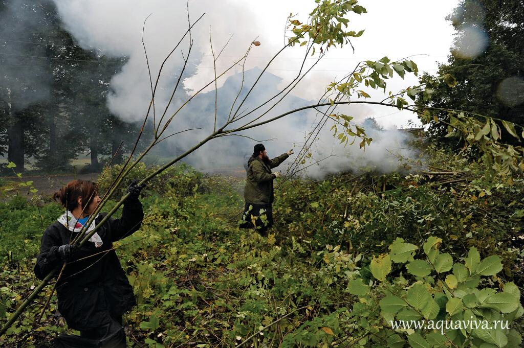 Поросль сжигают: дым от костров поднимается до самого неба