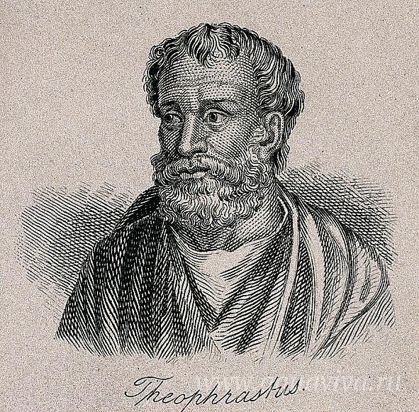 Джон Вильям Кук. Теофраст. Гравюра. Первая половина XIX века