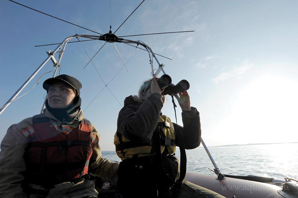Каждый день патруль должен осматривать всю акваторию шхер